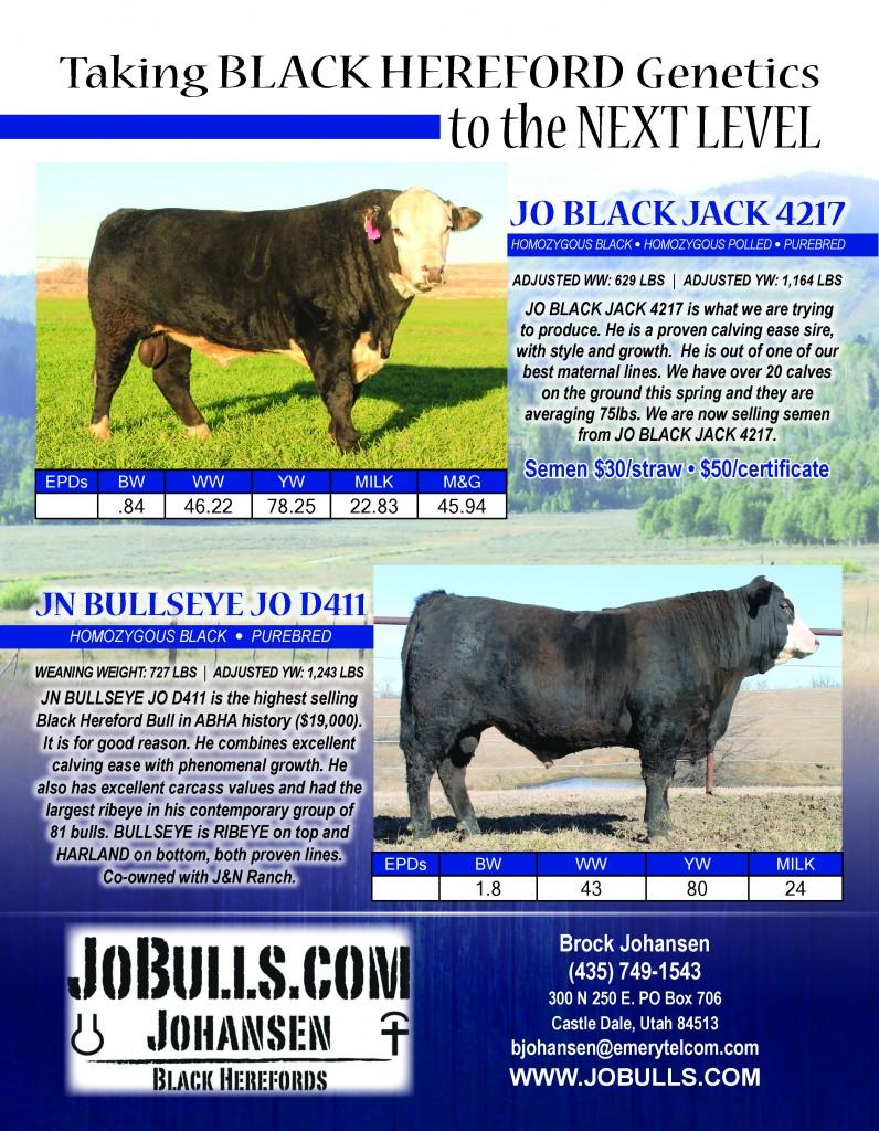 Jo Bulls Spring 17[3]